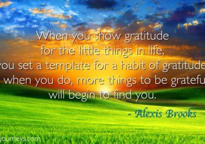 gratitude_quote