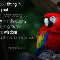 Quote Gallery
