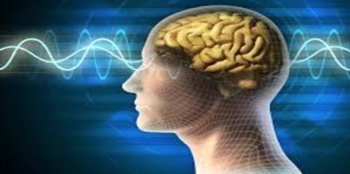 brain_wave